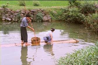广西名仕田园,2001