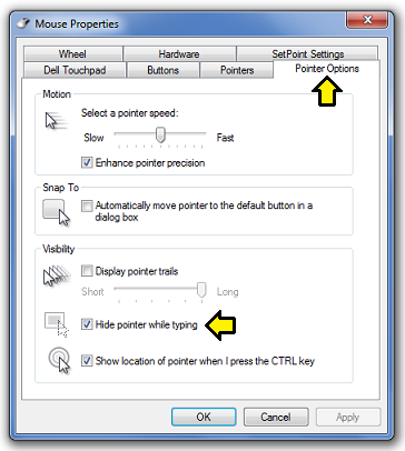 Hide_Cursor_When_Typing.PNG?psid=1