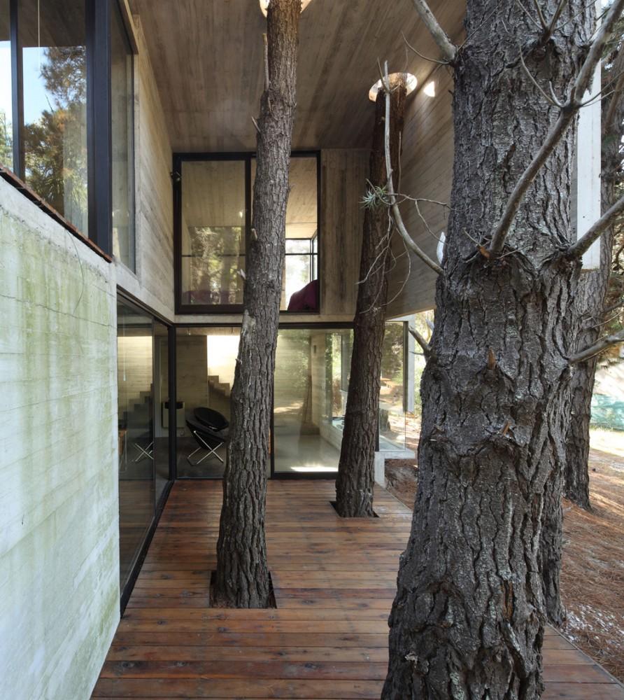 Casa Franz - BAK Arquitectos